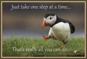 one-step-at-a-time 1